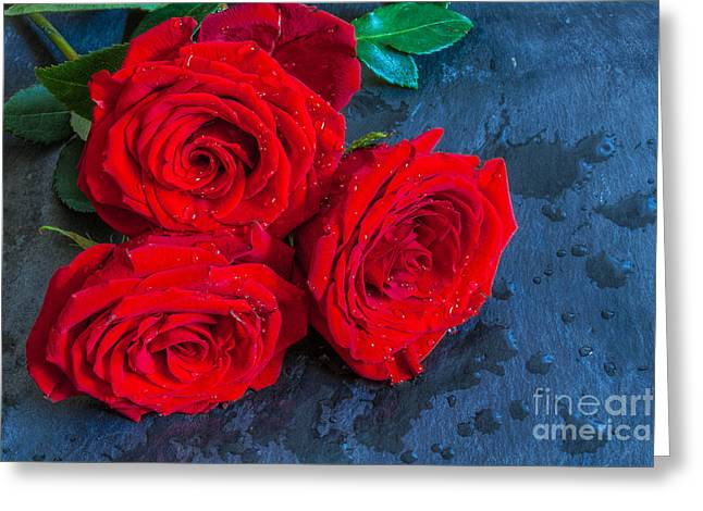 Three Roses On Slate Still Life Greeting Card by Randy Steele
