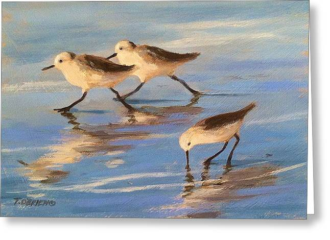 Three Sandpipers Greeting Card by Tina Obrien