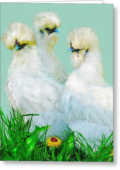 Three Silky Ladies Greeting Card by Jane Schnetlage