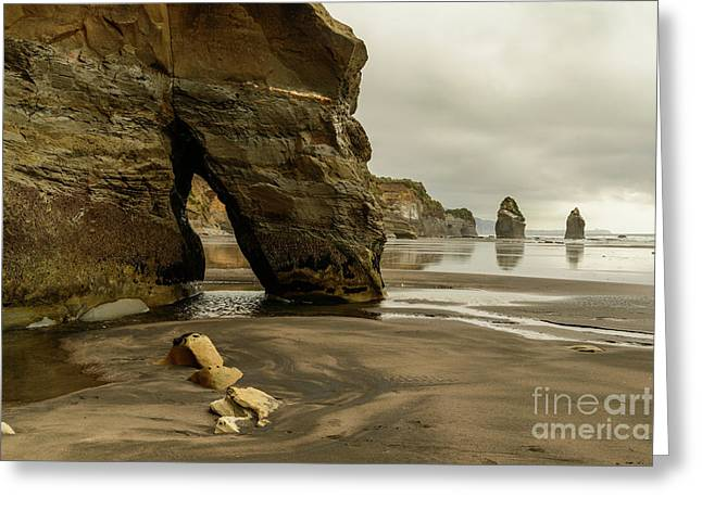 Three Sisters Greeting Card by Werner Padarin
