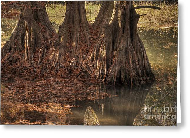 Greeting Card featuring the photograph Three Trees In Lake Murray by Tamyra Ayles