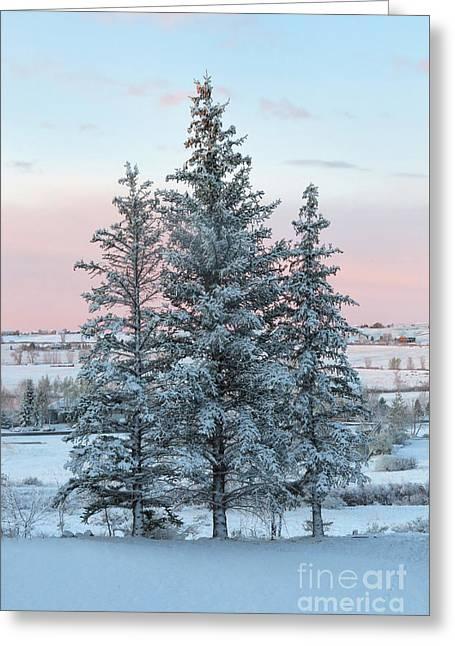 Three Trees Greeting Card by Ronda Kimbrow
