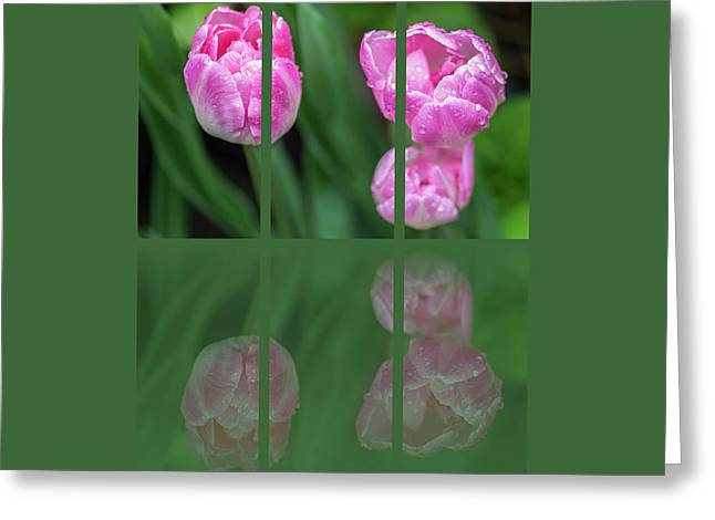 Three Tulip Triptych Greeting Card by Martina Fagan