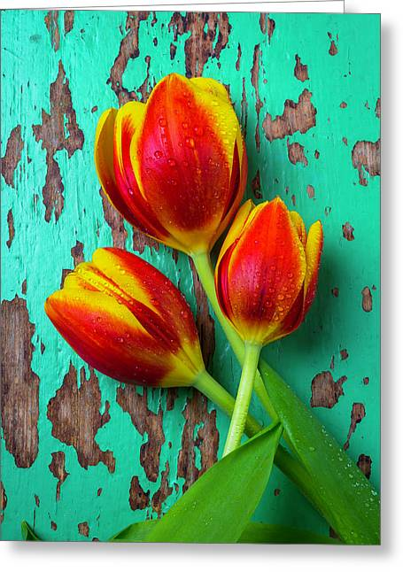 Three Tulips On Green Board Greeting Card by Garry Gay