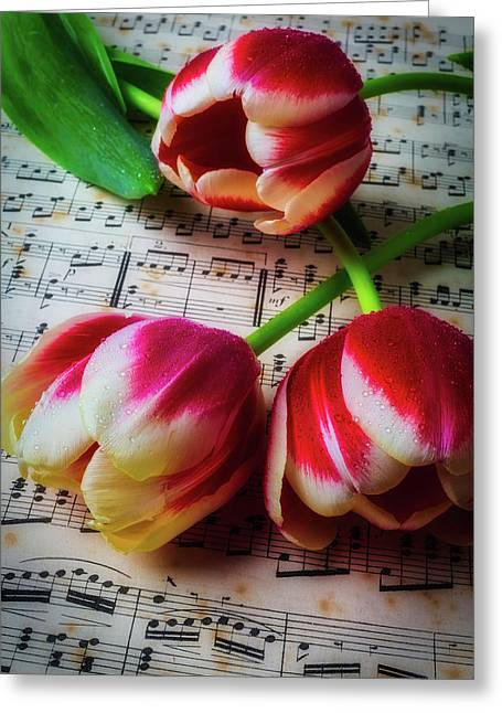 Three Tulips On Sheet Music Greeting Card