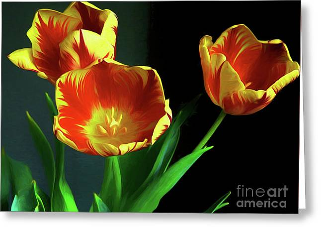Three Tulips Photo Art Greeting Card by Sharon Talson