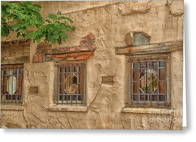 Three Windows Greeting Card by Tamera James