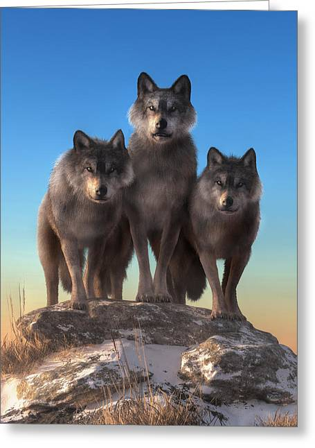 Three Wolves Watching You Greeting Card