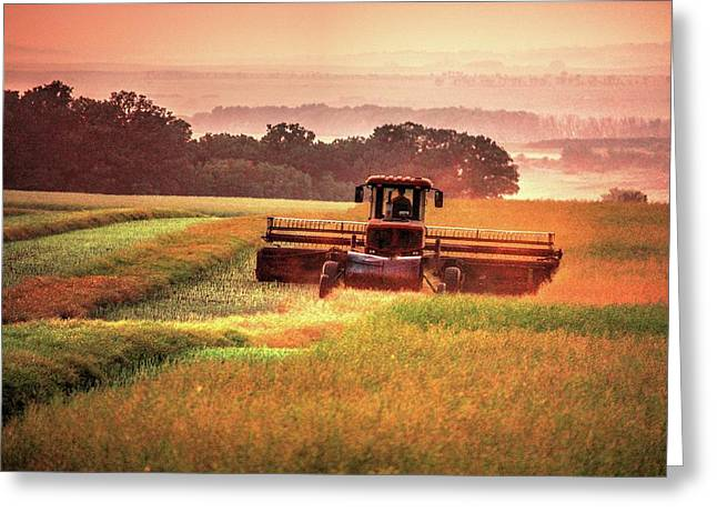 Swathing On The Hill Greeting Card