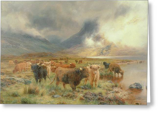 Through Glencoe Greeting Card by Louis Bosworth Hurt