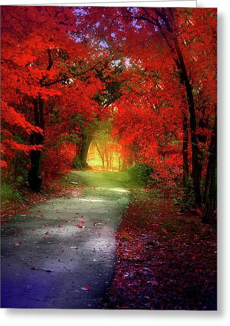 Through The Crimson Leaves To A Golden Beginning Greeting Card