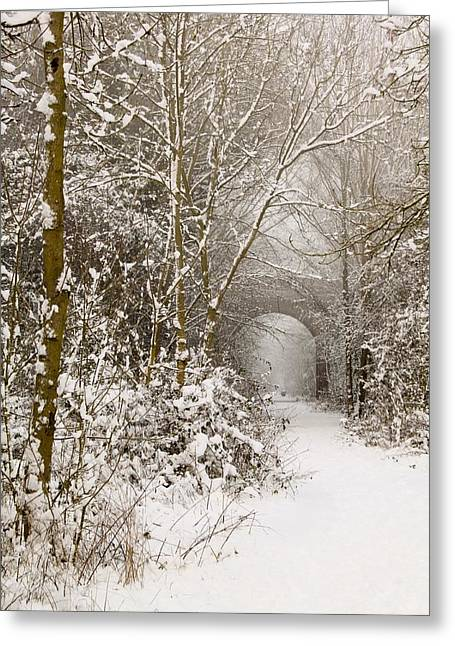 Through The Trees Through The Snow Greeting Card by Adam Smith