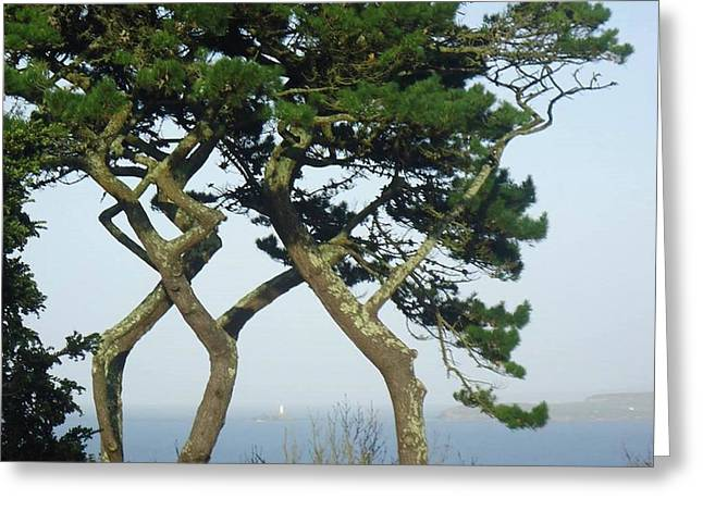 Through The Trees To Godrevy From St. Ives Greeting Card