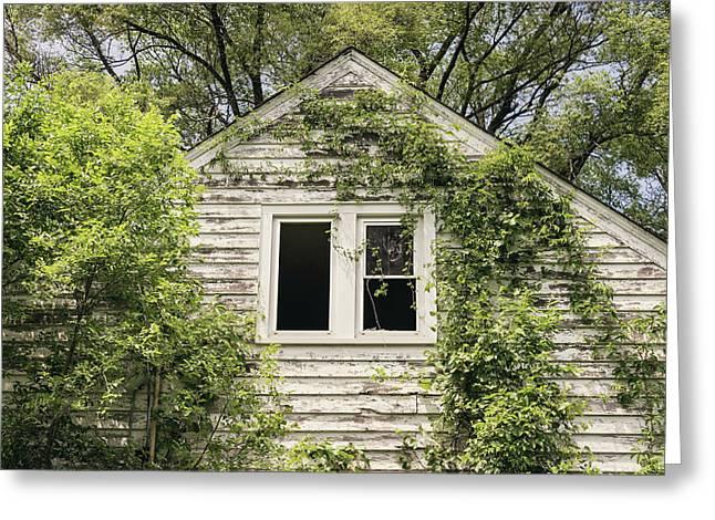 Through The Window Greeting Card by Kim Hojnacki