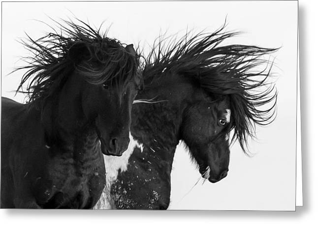 Thunderheart Greeting Card by Sandy Sisti