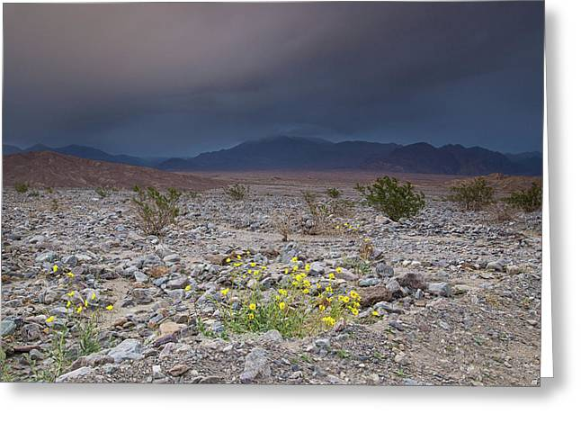 Thunderstorm Over Death Valley National Park Greeting Card
