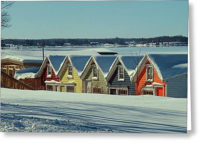 Winter View Ti Park Boathouses Greeting Card