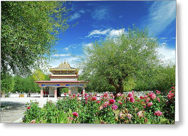 Tibet Scenery In Autumn Greeting Card
