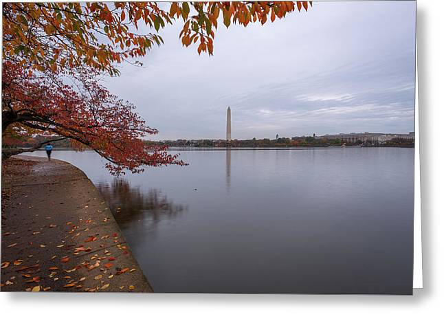 Tidal Basin In Fall Greeting Card by Michael Donahue