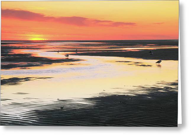 Outgoing Tide Greeting Cards - Tidal Flats at sunset Greeting Card by Roupen  Baker