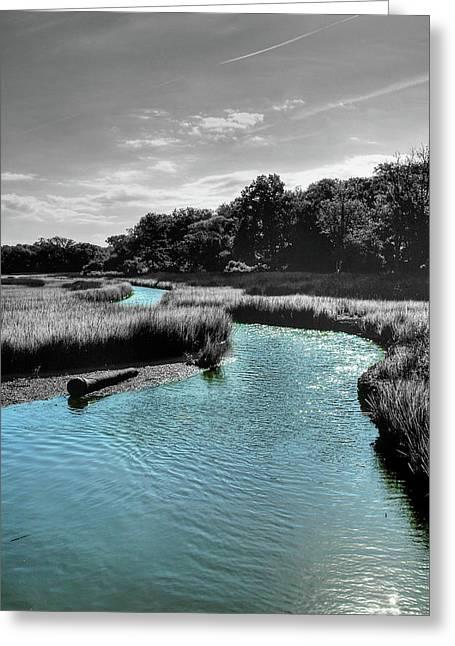 Tidal Marsh Greeting Card by Drew Castelhano