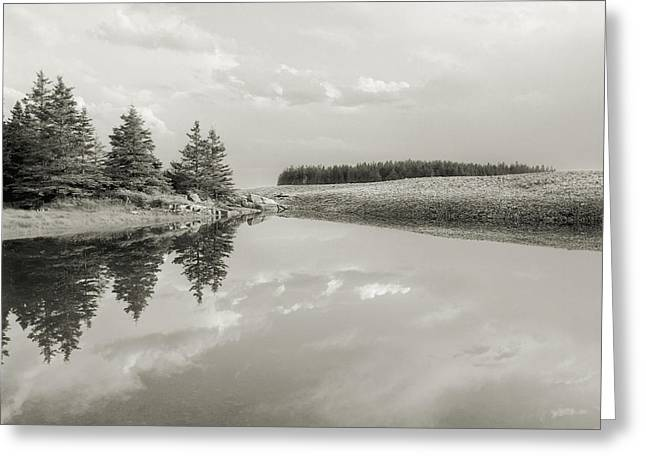 Tidal Pool, Schoodic Point, Bar Harbor, Me Greeting Card by Scott Griswold