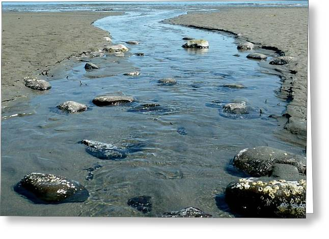 Greeting Card featuring the photograph Tidal Pools by 'REA' Gallery