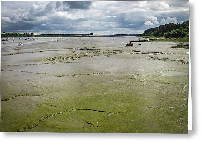 Tide Is Out  Greeting Card