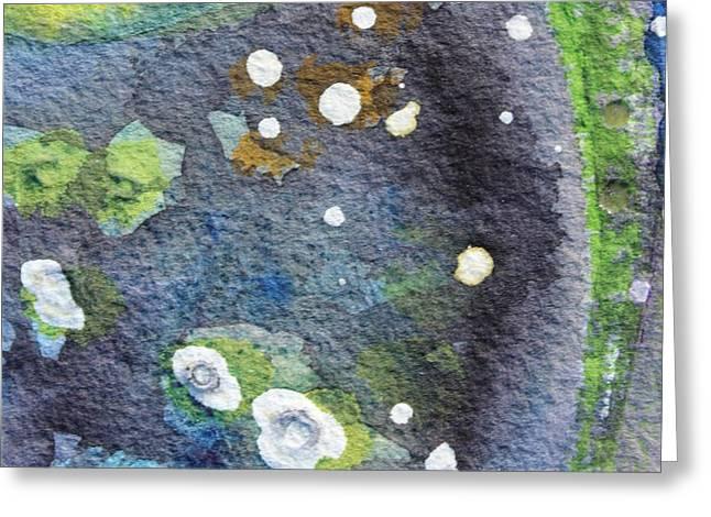 Tide Pool 2 Greeting Card by  Judy Bernier