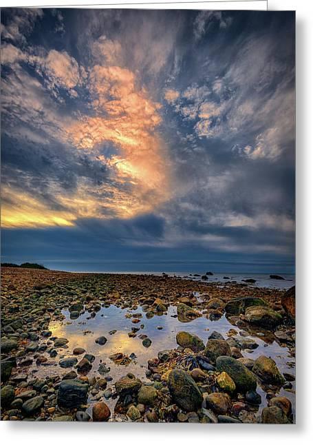 Tide Pool At Montauk Point Greeting Card