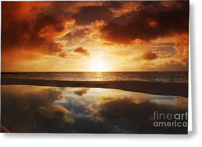 Tidepool At Sunset Greeting Card by Vince Cavataio - Printscapes