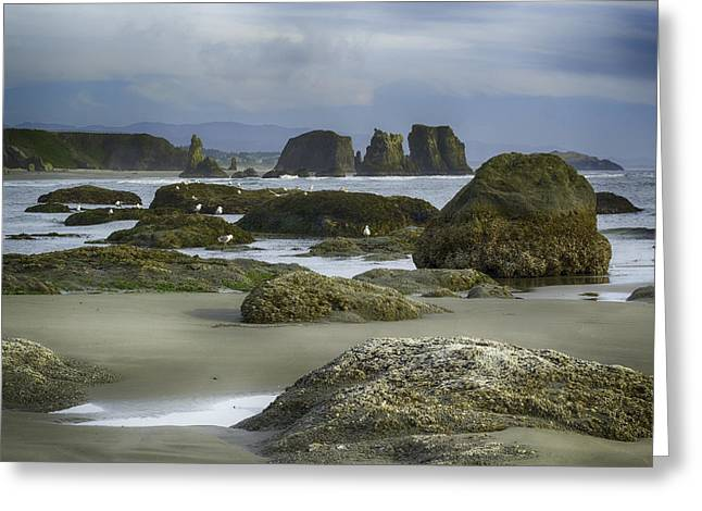 Tidepool Fade Greeting Card