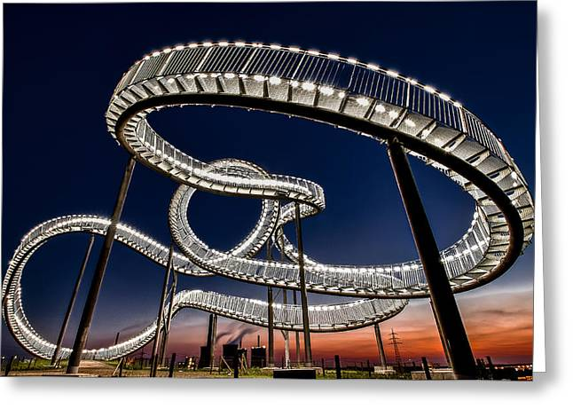 Tiger And Turtle At Dawn Greeting Card by Holger Schmidtke