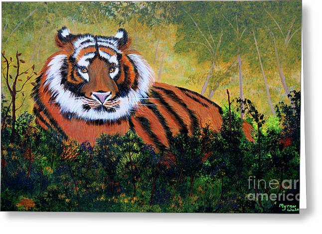 Tiger At Rest Greeting Card