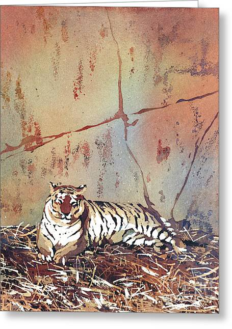 Tiger At Rest Greeting Card by Ryan Fox