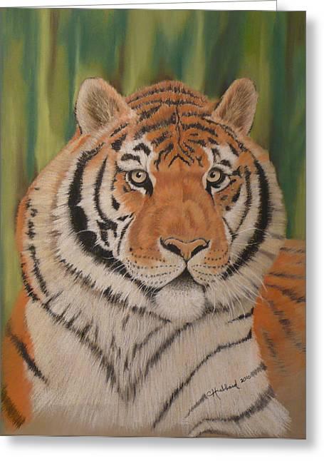 Tiger Greeting Card by Charles Hubbard