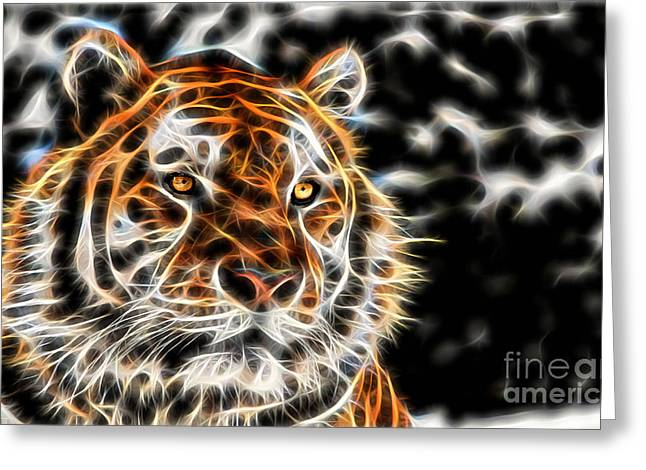 Tiger Collection Greeting Card by Marvin Blaine