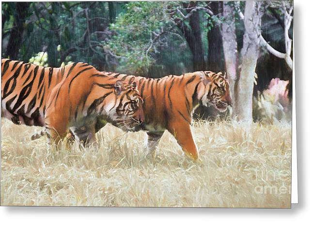 Tiger Crossing Greeting Card