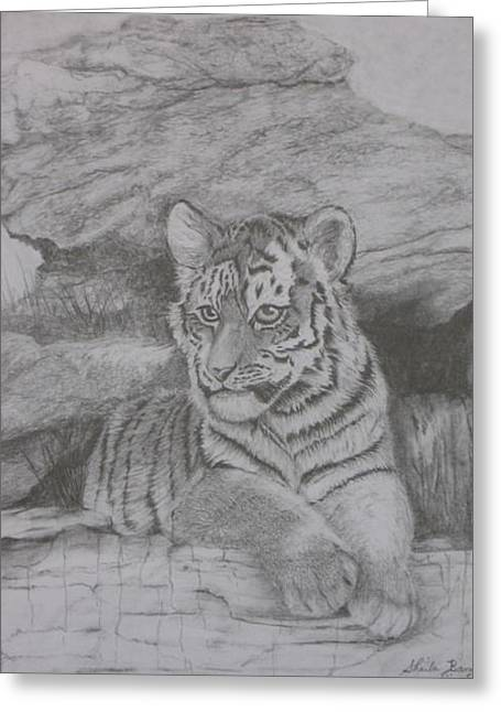 Tiger Cub 2 Greeting Card by Sheila Banga