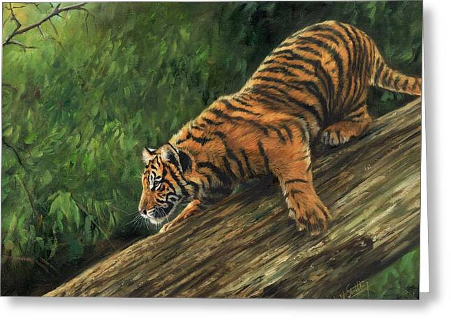 Tiger Descending Tree Greeting Card by David Stribbling