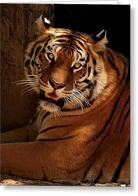 Tiger II Greeting Card by Sandy Keeton