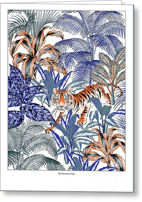 Tiger In It's Habitat Greeting Card by Jacqueline Colley