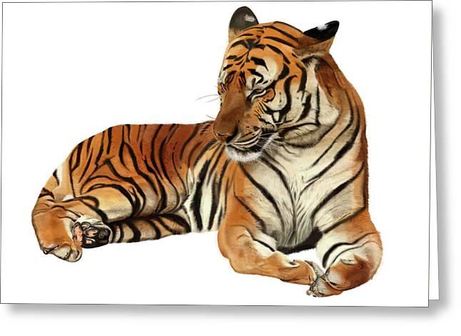 Tiger In Repose Greeting Card