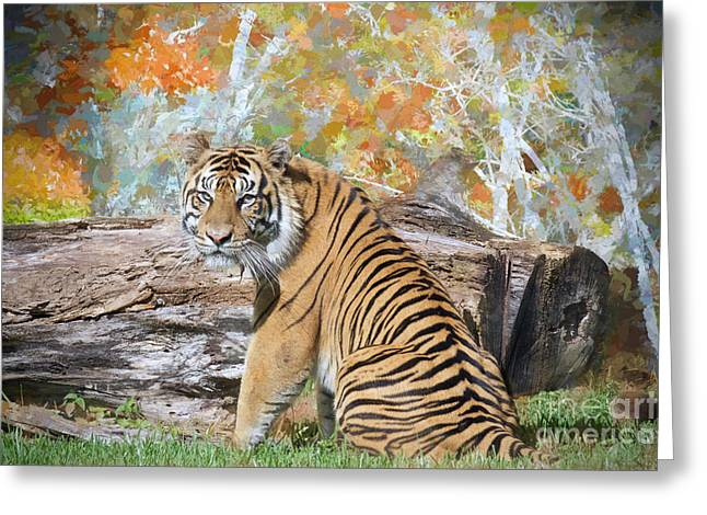 Tiger In Spring Greeting Card