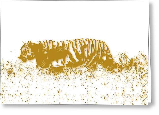Tiger Greeting Card by Joe Hamilton