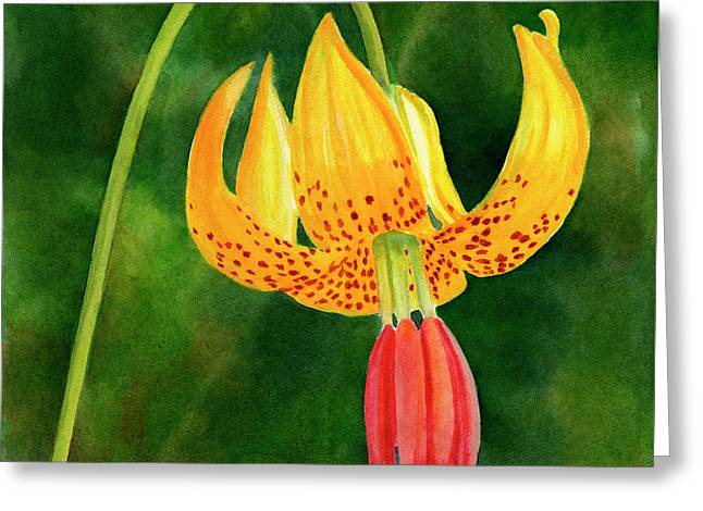 Tiger Lily Blossom With Background Greeting Card