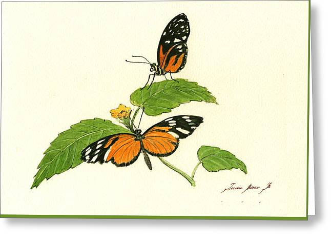 Tiger Longwing Heliconian Greeting Card by Juan Bosco