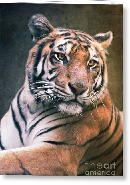 Tiger No 6 Greeting Card by Angela Doelling AD DESIGN Photo and PhotoArt