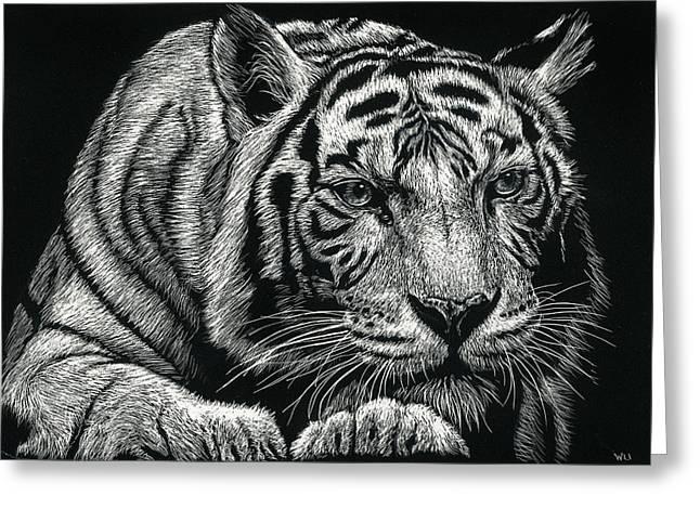Tiger Pause Greeting Card