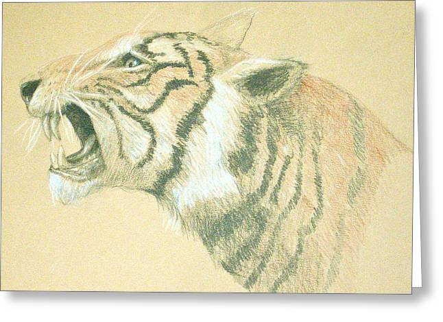 Tiger Roaring Greeting Card by Deborah Dendler